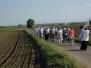 Hagelprozession am 28.05.2012