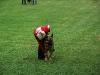 koerung-1308201113