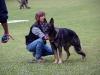 koerung-1308201114